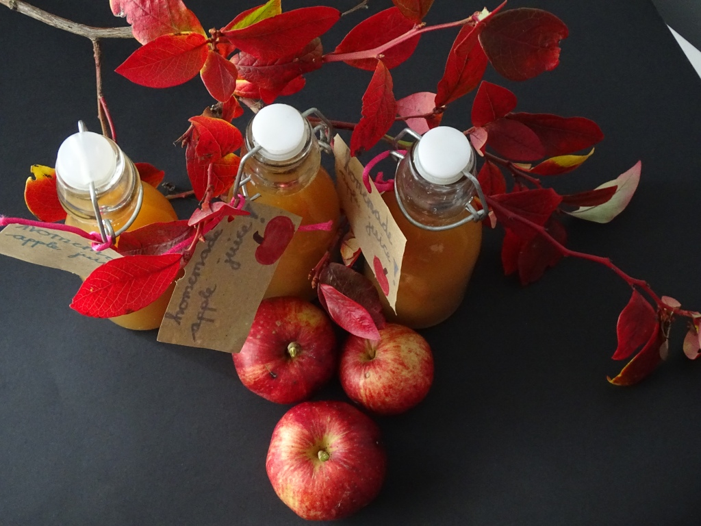 Bottles of apple juice, apples, branches of a tree, black background