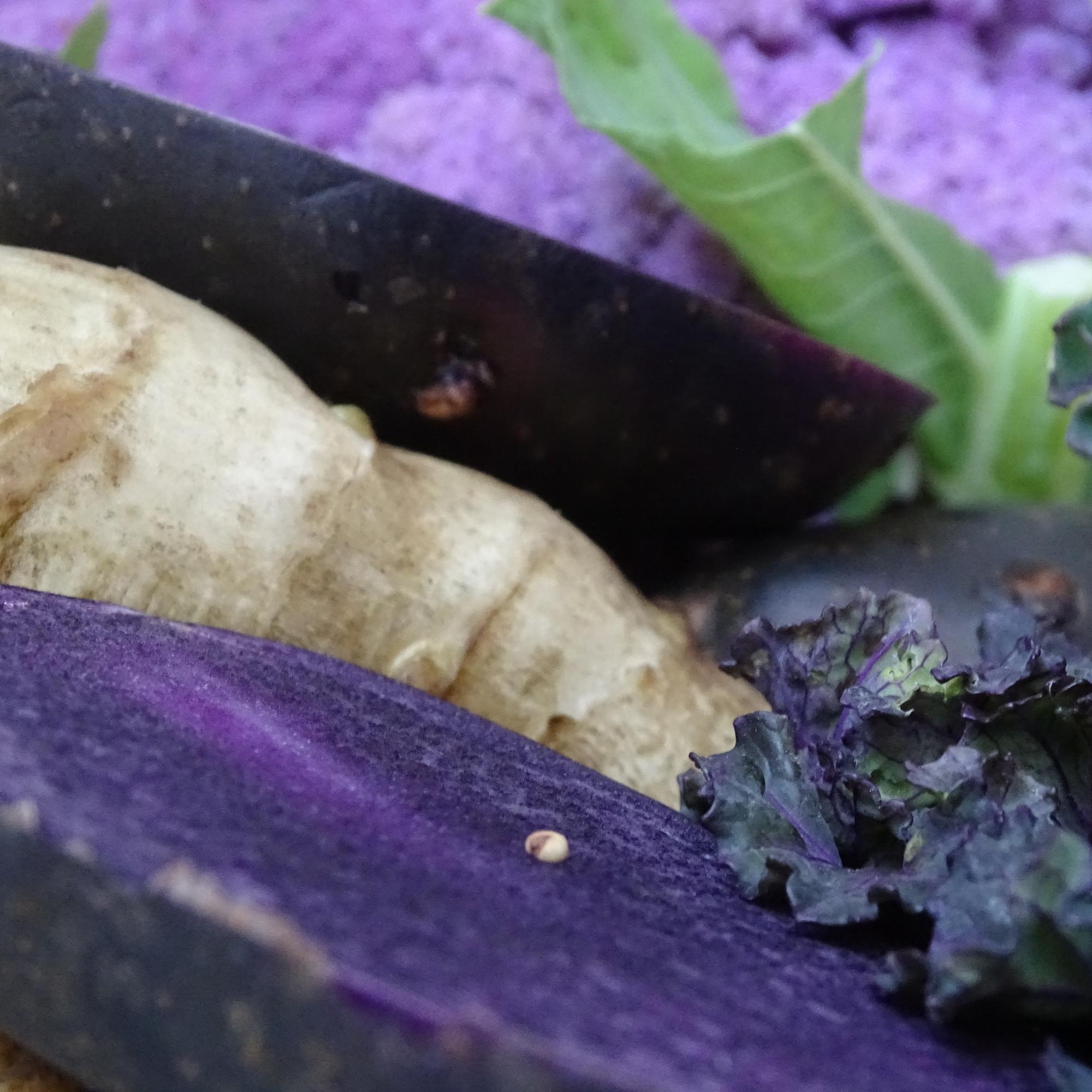 jerusalem artichokes, anneliese purple potatoes, flower sprout & purple cauli'