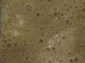 Close up of sourdough starter