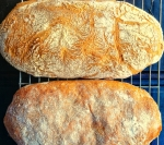 Ciabatta loaves, just out of the oven, golden crust