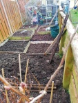Preparing the ground for planting