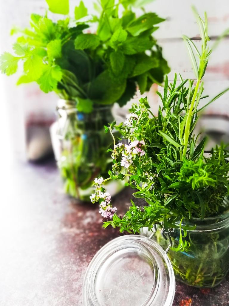 Food photography, fragrant fresh garden herbs, in glass jars