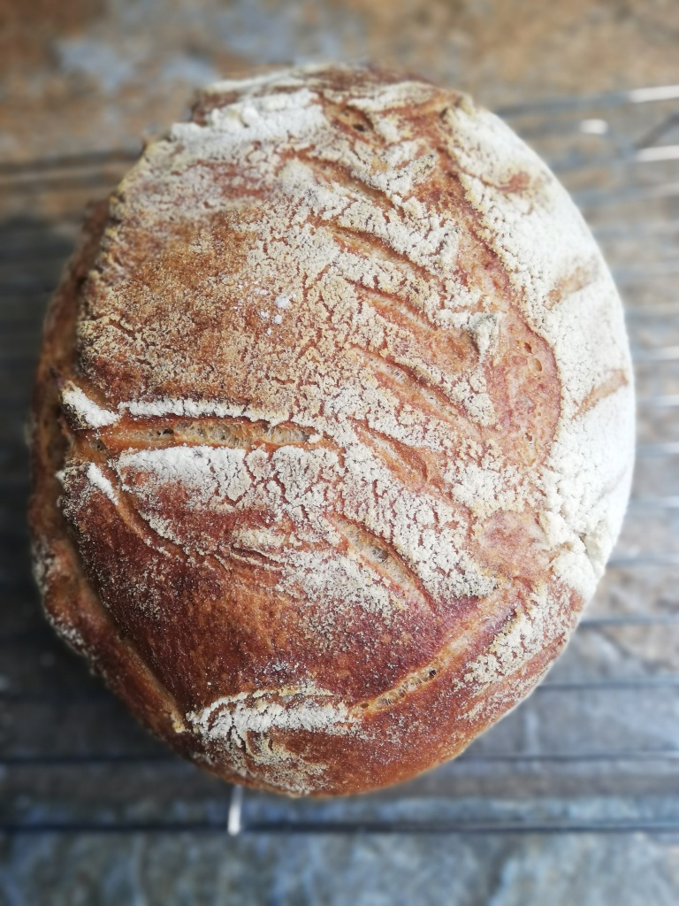 Sourdough batard, just out of the oven