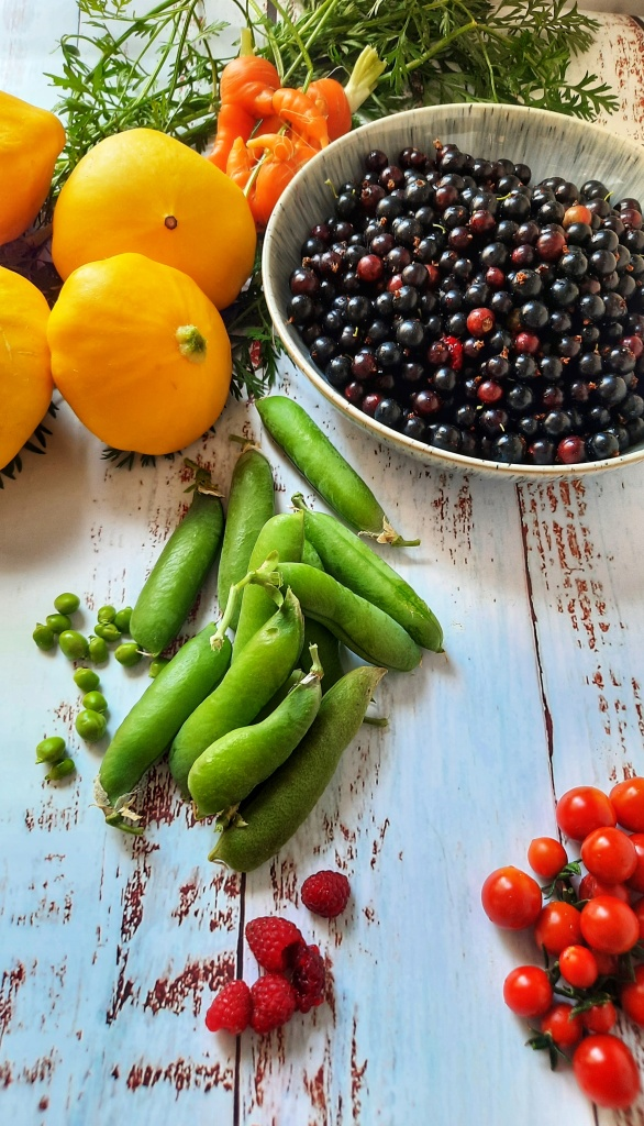 Image,Produce from the garden, Pattypan squash, peas, blackcurrants, raspberry, cherry tomatoes, wonky carrots