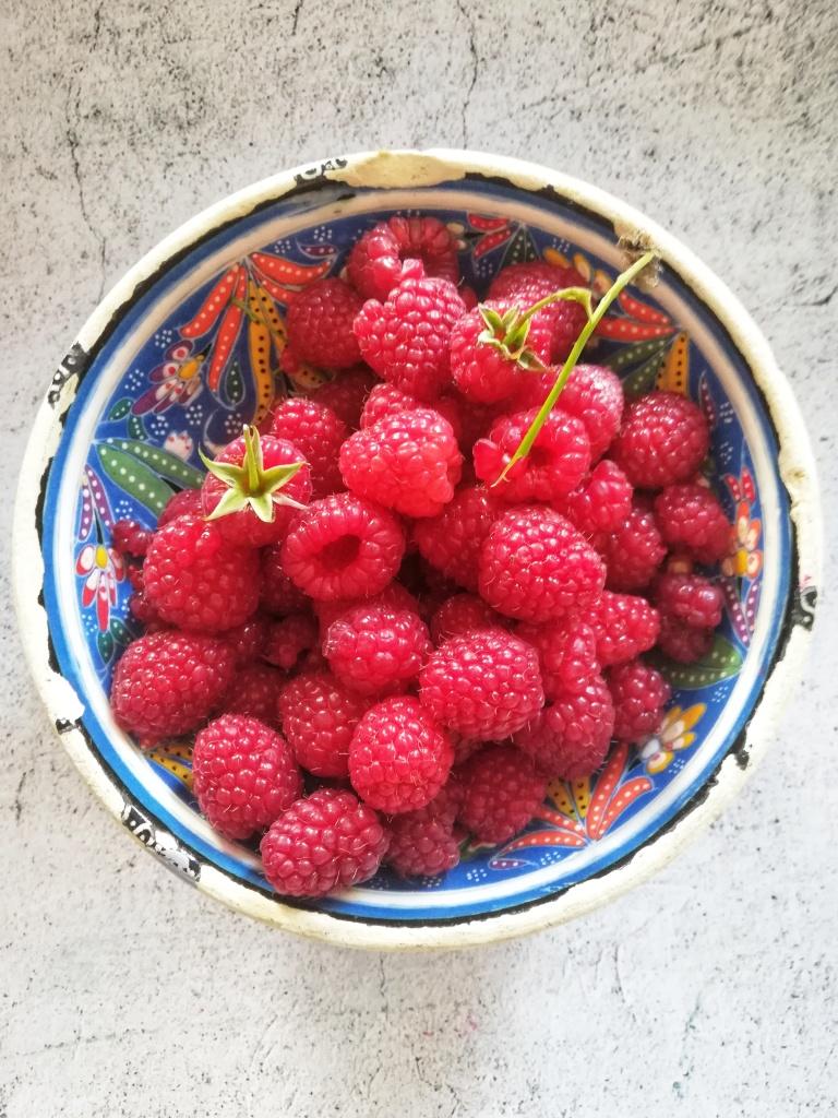 Image, freshly picked bowl of raspberries